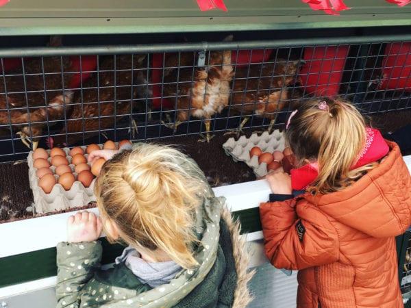 Kies eieren voor je geld - met een EI-bonnement